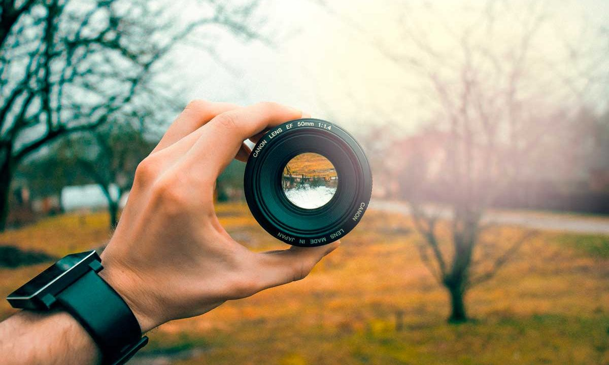 Foto-di-Jonas-Svidras-da-Pixabay-